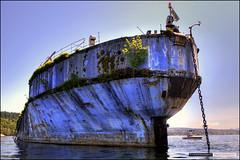 The Hulks (Clayton Perry Photoworks) Tags: old boat ships rusty hdr sunshinecoast breakwater powellriver hulks