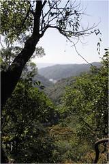 自然谷照片