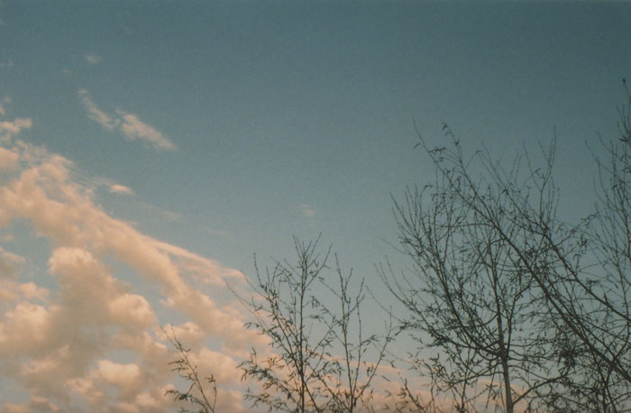 clouds  {yashica}