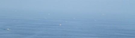flotilla