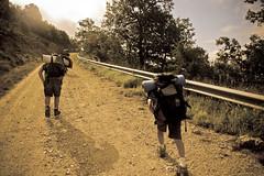 Campamento de Verano Ranger