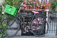 pink flowery bycicle (aapais) Tags: pink flowers flores netherlands amsterdam bicicleta holanda corderosa bycicle amsterdão