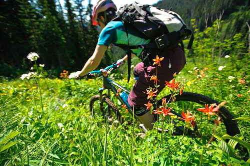 Tenquille Trail Alpine ride Aug 12 2011 -1