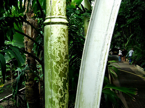Palm House column and beam