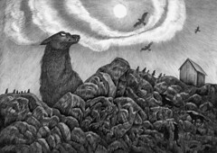 north (Hochulia) Tags: wild sky mountains illustration ink norge wolf rocks graphic wolves fjords 018 graphica