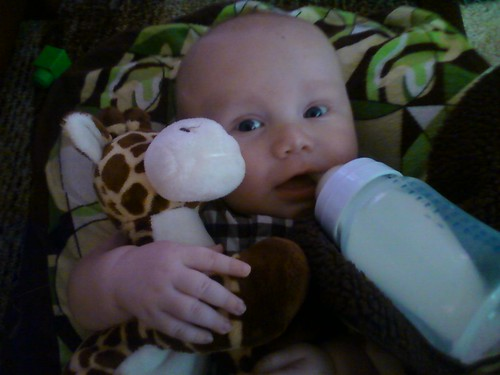 Will loves his giraffe