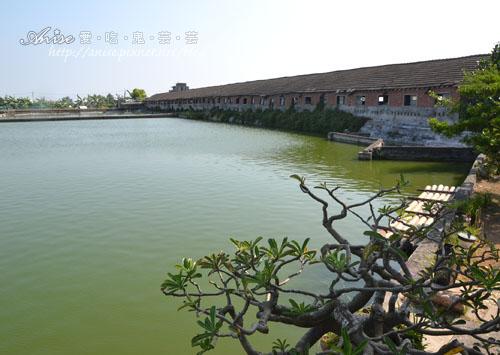 欣昌錦鯉養魚場018.jpg
