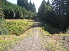 The second (and larger) washout on the CZ haul road has been repaired