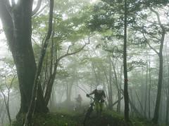 fog ride (noz.) Tags: bike japan mountainbike mtb jpn trailride byke singletrack
