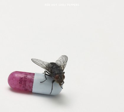 "Image of the Red Hot Chili Peppers' ""I'm With You"": pale grey background with a photo of a half-pink/half-white medicine capsule that says ""I'M WITH YOU"" on the pink part and has a fly sitting on the white part."