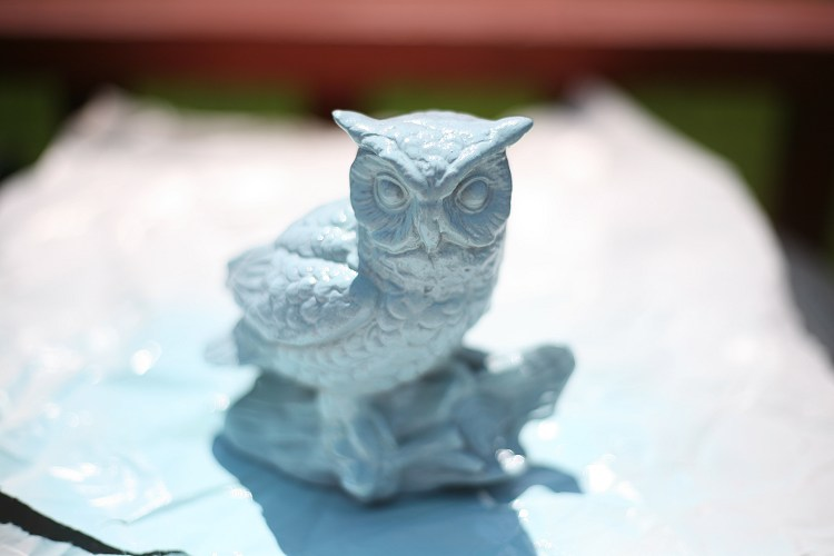 08-31-owl3
