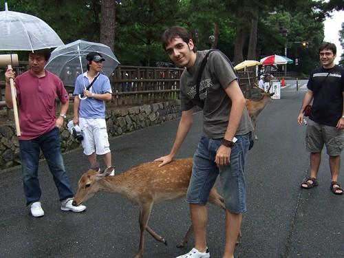 1109 - 21.07.2007 - Nara