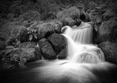 Radioactive Waterfall B&W (M Hillier) Tags: park trees white black fern nature water woodland river landscape flow waterfall site stream long exposure district wildlife sheffield reserve peak blurred national valley trust gorge brook cascade interest scientific wyming specieal