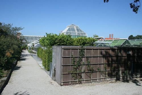 Gewächshäuser - Botanischer Garten München