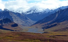 Mountains - Autumn in Denali (blmiers2) Tags: travel autumn mountain mountains fall nature alaska clouds landscape nikon denali mtmckinley d3100 blm18 blmiers2