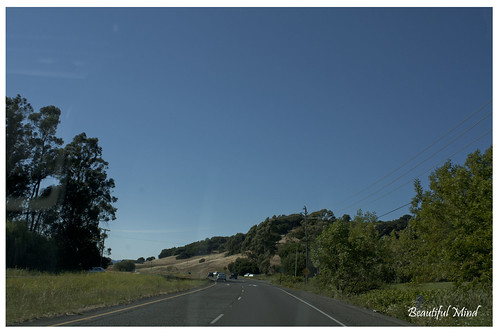 On the way to Napa Valley 2