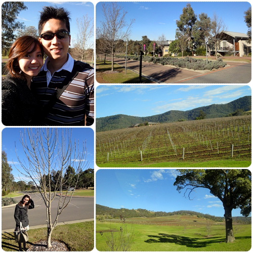 Sydney 2011 - Rise & Shine in Hunter Valley