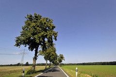 Bautzen to Boxberg Roadscape (8)