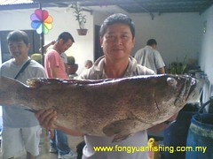 20090822 (fymac@live.com) Tags: mackerel fishing redsnapper shimano pancing angling daiwa tenggiri sarawaktourism sarawakfishing malaysiafishing borneotour malaysiaangling jiggingmaster