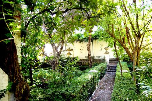 Apartment garden 5