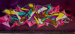 Time Lapse (Dirty Harry Palms GM) Tags: palms graffiti gm australia brisbane crew threats dts def ironlak samsn