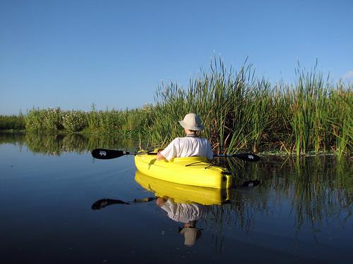 Kayaking DeBary Bayou