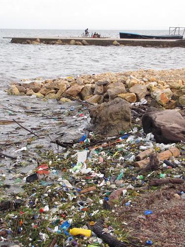 sometimes the Belizean shore's not so pristine