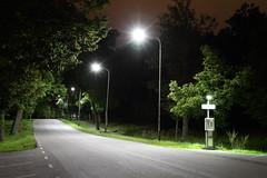 Djurgrden By Road (AdurianJ) Tags: pictures canon europa suecia lenses    nrdico escandinavia    manfrotto055cxpro4 manfrotto498rc2