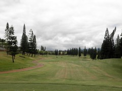 WAIKELE COUNTRY CLUB 222b