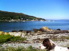 Lochranza, Arran