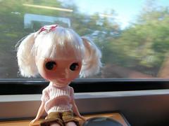 Train ride to Düsseldorf