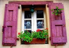 Window in old Albi (Sokleine) Tags: france window fenster eu tarn fenêtre albi 81 midipyrénées