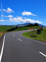 Forget the past and Move on.. (Waleed Ibrahem) Tags: life road street new blue trees newzealand wild sky sun mountain tree green beautiful weather clouds way scenic olympus move diamond zealand gross nz te past zuiko waleed mata  forget                1260mm   diamoonds  zwd e620      aldokhail   aldakhil