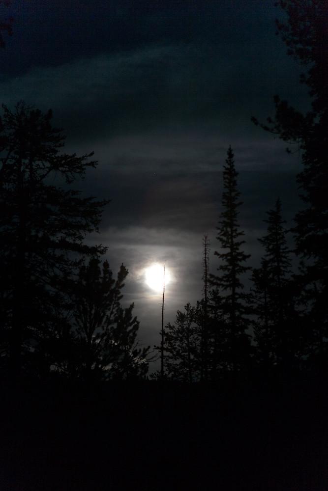 Moonlight Camping
