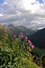 Alt Aran (Jordi TROGUET (Thanks for 1.862.797+views)) Tags: leica espaa naturaleza port de la spain niceshot valle natura nubes catalunya montaa aran catalua muntanya x1 baqueira pirineos pirineus pirineo pirineu nubols jtr valldaran bonaigua naturenatural vaqueira troguet jorditroguet awesomeblossoms flickraward leicax1 flickrtravelaward leicacameraagleicax1