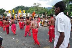 Kandy Day Perahera