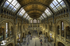 Natural History Museum (A.G. Photographe) Tags: england france london history museum ga nikon natural ag londres angleterre uga nikkor naturalhistorymuseum franais hdr anto photographe xiii photomatix 1424 d700 1424mm antoxiii hdr5raw agphotographe stunningphotogpin
