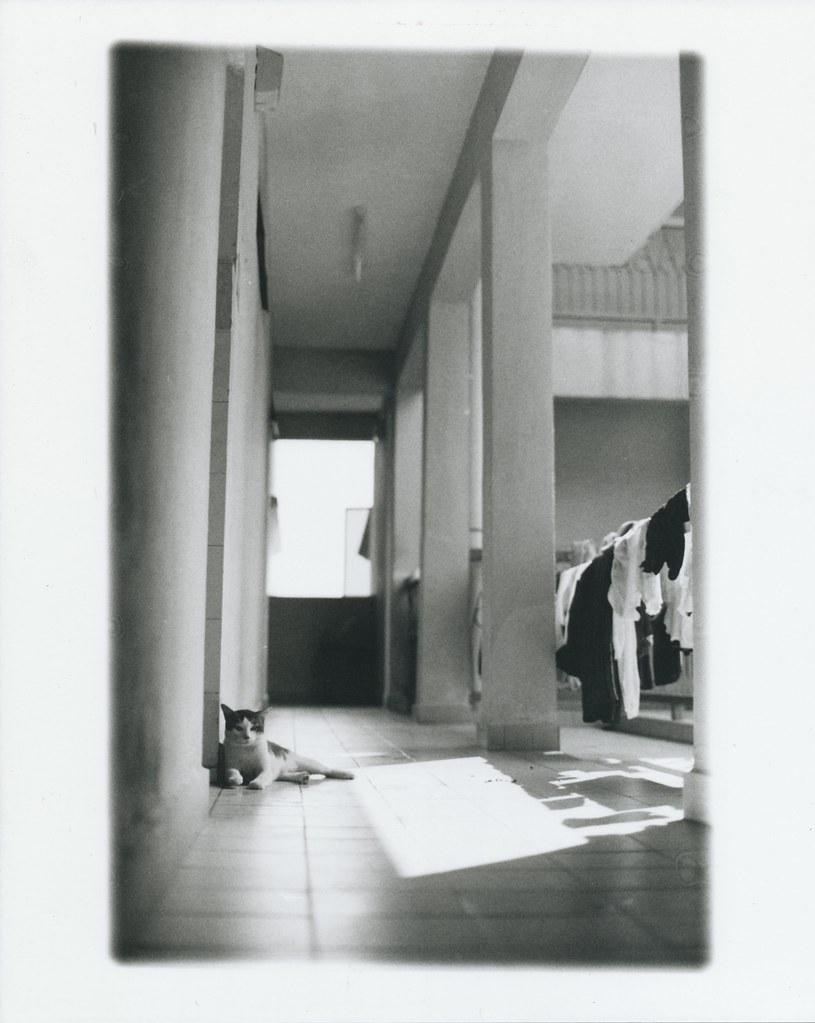 Darkroom8