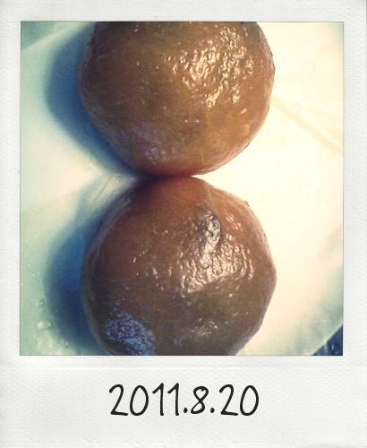 20110820_Photo Diet_1