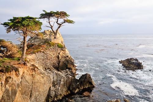 1106-SF&Monterey-3520