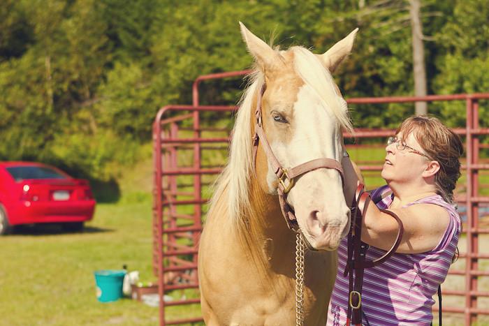 Halifax NS Wedding Portrait Horse Equine photography - Splash & Donna - Nicole Payzant -  (23 of 26)
