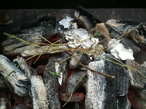 Thyme Stems on the Coals