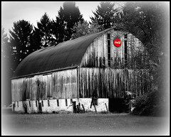 All Cokes Are Good (Denise @ New Mercies I See) Tags: old ohio red summer bw field barn rural landscape outdoors quote farm lisbon coke august worn andywarhol weathered aged cocacola selectivecolor northeastohio ruralohio columbianacounty nikond90