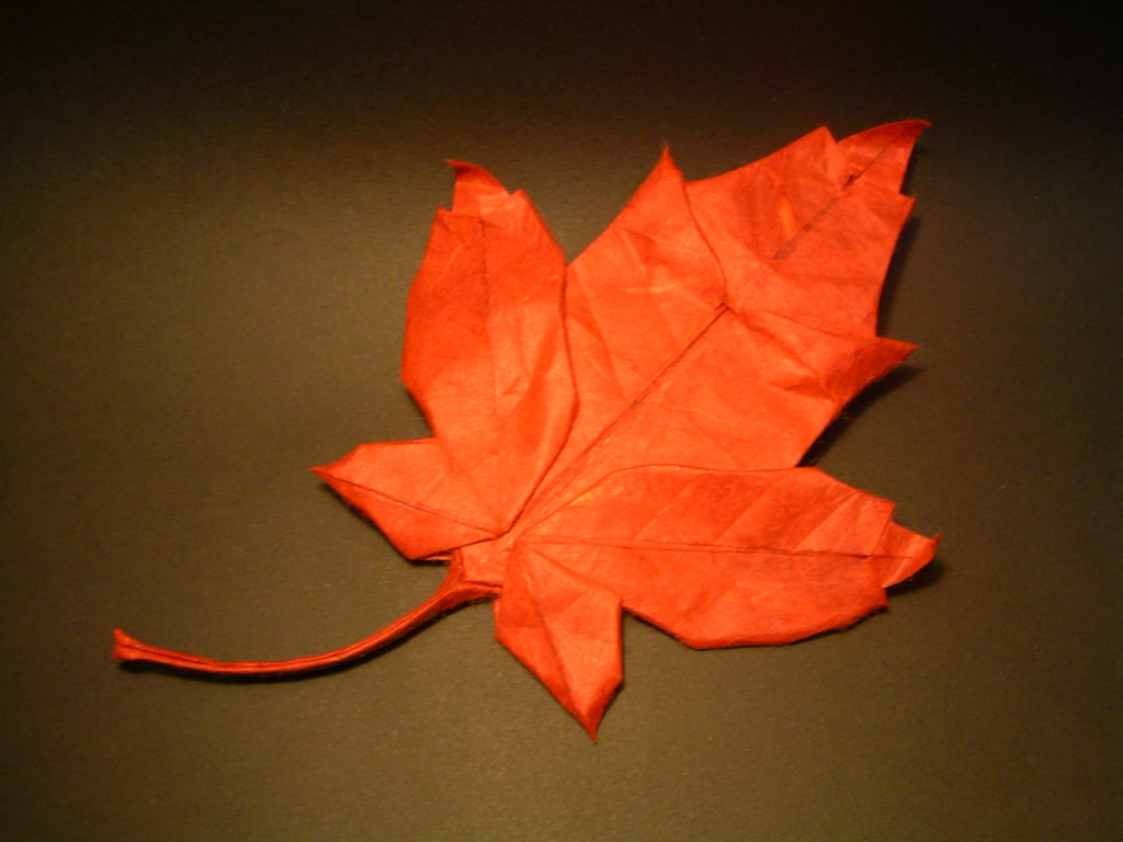 The World's Best Photos of maple and origami - Flickr Hive ... - photo#48