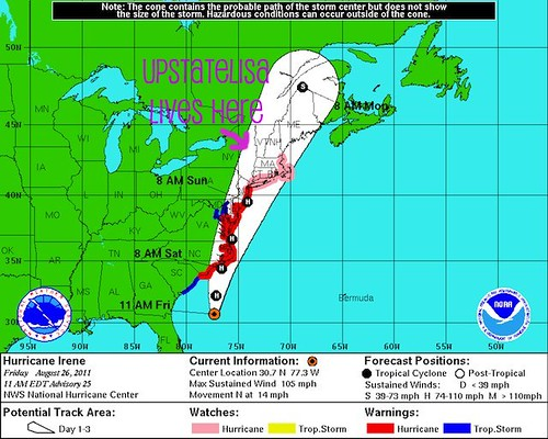 Hurricane Irene meets upstatelisa