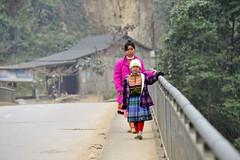 04_LAO68730028 (TC Yuen) Tags: vietnam sapa hmong terracefarming locai