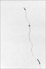 aiguille du midi (heavenuphere) Tags: snow france mountains alps sports nature sport alpes landscape outdoors extreme adventure climbing alpine chamonix montblanc massif aiguilledumidi hautesavoie rhônealpes chamonixmontblanc 55250mm téléphériquedelaiguilledumidi