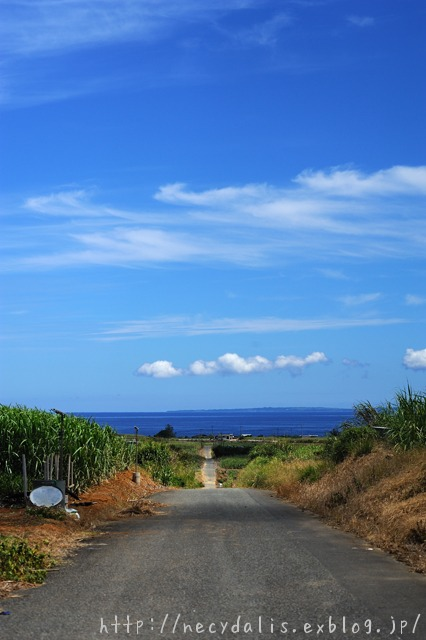 Scenery of Island...