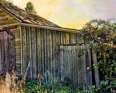Old Farm Shed (TheNewJane) Tags: friends personalfavorite blueribbonwinner