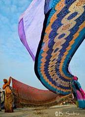 Colors are flying (subirbasak) Tags: shadow people india color horizontal standing outdoors photography flying clothing holding women day adult hanging ritual choice cloths sari variation preparation adultsonly religiouscelebration pilgrim rites drying westbengal saturatedcolor realpeople sharee colorimage indianculture gangasagar largegroupofpeople onlywomen subirbasak gangasagarfair